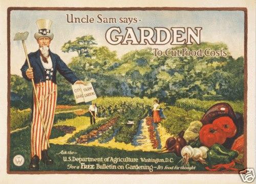 Uncle Sam gardenpic